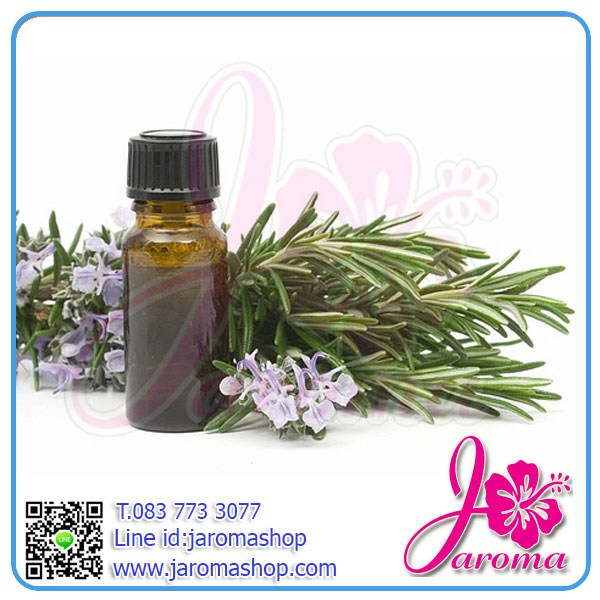 Tea Tree Essential Oil (ทีทรี)